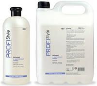 Бальзам PROFIStyle с протеином шелка для всех типов волос 1000 мл