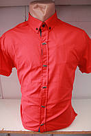 Мужская рубашка оптом Турция