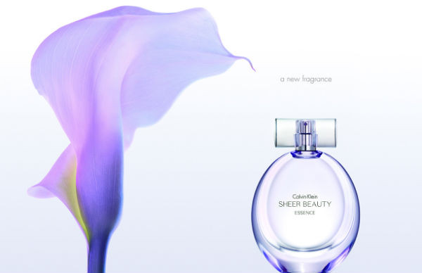 fee6592a97e5a (Кельвин Кляйн Шеер Бьюти Эссенс Calvin Klein Sheer Beauty Essence  туалетная вода 100 ml. (Кельвин Кляйн Шеер Бьюти Эссенс ...