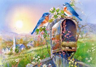 Пазлы Castorland Птицы и почтовый ящик 2662, 1000 элементов