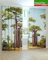 Фотошторы деревья Баобаб