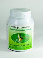 Wan Chack Mod Luk 100 кап Куркума Яванская для женского здоровья RBA /002