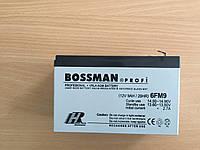 Аккумулятор для детских электромобилей Bossman-Profi 6FM9