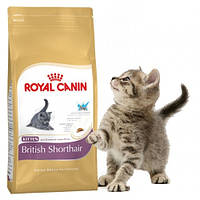 Royal Canin British Shorthair Kitten   0.4 kg