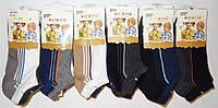 Детские носочки на мальчиков оптом Aura Via , 28-35 рр., арт FYD500, фото 1