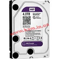 Жесткий диск WD 4TB (WD40PURX)