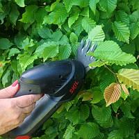 Новые статьи по обрезки растений