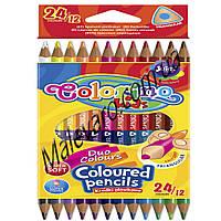"""Карандаши цветные двухсторонние,  в пластиковом контейнере, трехгранные, """"Duo Colors""""  12 карандашей, 24 цвета"""