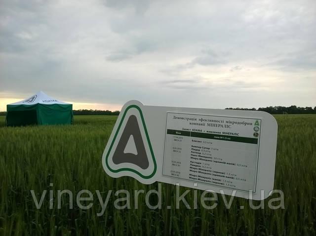 Удобрение микроэлементное для пшеницы и других зерновых. Повышение устойчивости и урожайности.