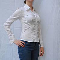 Блузки женские белые, фото 1
