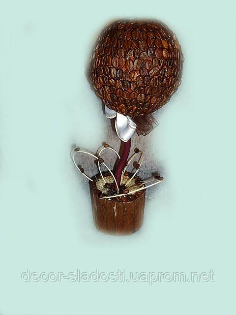 """Кофейное дерево""""Вираж"""""""