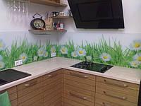 Стеновая панель для кухни. Киев. Купить