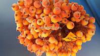 Ягода сахарная оранжевая на проволоке