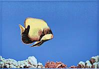 07734   Monocolor Fish 1 - Декор 400x275