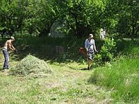 Покос травы Днепропетровск