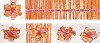 WLAGE251   Бордюр  INDIA для ванной 25x5 светло-оранжевый Rako