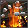 Ароматизатор TPA Toasted Marshmallow