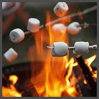 Ароматизатор TPA Toasted Marshmallow, фото 1
