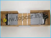 Радиатор интеркулера Renault Trafic II 2.0DCi 06- Nissens Дания 96583