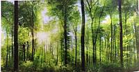 Фотообои, природа, лес, рассвет,  ПРЕСТИЖ №26 392смХ204см