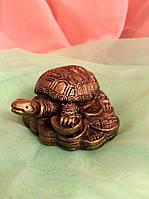 Черепаха на монетах 3x5 см