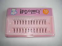 Ресницы для наращивания IPD №13, пучковые, с клеем