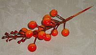 Ветка с ягодами оранжевая