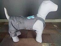 Одежда для собак комбинезон джинсовый