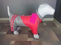 Одежда для собак дождевик спортивный