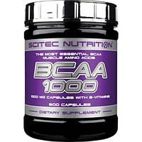 Купить всаа Scitec Nutrition BCAA 1000, 300 caps
