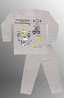 Теплая детская пижама (кофта и брюки)  (Серый)