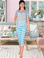 Пижама (футболка и капри) (Серый с голубым)