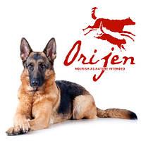 Orijen для собак