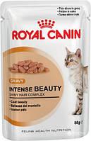Royal Canin Intense Beauty (кусочки в соусе) корм для кошек старше 1 года для поддержания красоты шерсти
