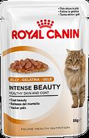 Royal Canin Intense Beauty (кусочки в желе) корм для кошек старше 1 года для поддержания красоты шерсти