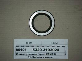 Кольцо упорное (пр-во КАМАЗ), 5320-3103024