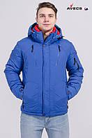 Куртка мужская Avecs AV-7342514 Синий электрик Авекс Размеры 46 52