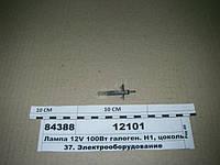 Лампа 12V 100Вт галоген. Н1, цоколь P14,5S (ДИАЛУЧ), 12101