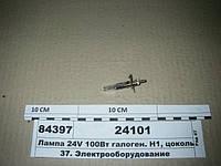 Лампа 24V 100Вт галоген. Н1, цоколь P14,5S (ДИАЛУЧ), 24101