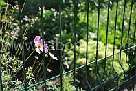 Забор из решетки для дачи.jpg
