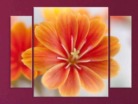 "Модульная картина ""Цветок"", фото 2"