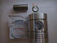 Поршнекомплект Д3900 на 4 кольца Дружба