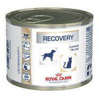 Royal Canin Recovery 195 гр восстановительный период после болезни