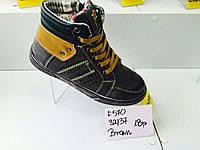 Демисезонные ботинки Clibee Brown F570 (32-37)