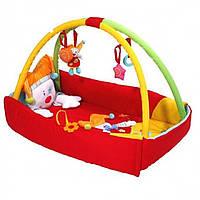 Развивающий коврик BabyOno Клоун 494 - 1001.494