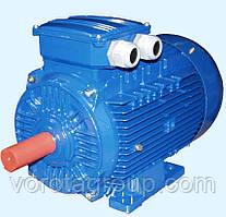 Електродвигун промислового електроприводу ASI100KIT