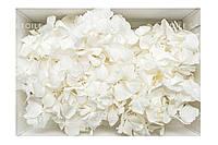 Гортенция Премиум (белый в коробке)