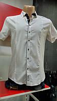 Рубашка мужская короткий рукав 3 кнопки белая