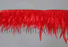 Перо-червона спідниця 8-13см/45-47см