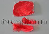 Перья красные 5-15 см 100 шт